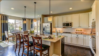 New Homes in Chicago Illinois IL - Tanglewood Oaks by K. Hovnanian Homes