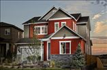 New Homes in Denver Colorado CO - Debut Collection at Terrain  by TRI Pointe Homes