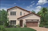 New Homes in Orlando Florida FL - Royal Cypress Preserve by Toll Brothers