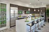 New Homes in Phoenix Arizona AZ - 240 Missouri by K. Hovnanian Homes