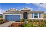 New Homes in Tampa Bay Florida FL - D.R. Horton  at Waterset by Newland Communities