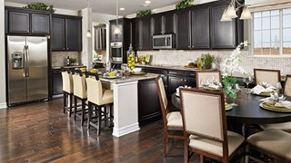 New Homes in Colorado CO - Richmond American Homes at Crystal Valley by Richmond American