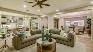 New Homes in Arizona AZ - Trovita Norte Capstone Collection by Taylor Morrison