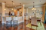 New Homes in Georgia GA - Brookhaven at Durham Lakes by Century Communities