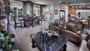 New Homes in - SouthBrook by American West