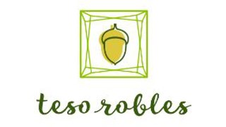 New Homes in - Teso Robles by Comstock Homes