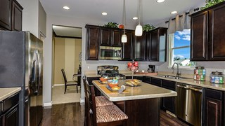 New Homes in Illinois IL - Tuscany Woods by CalAtlantic Homes