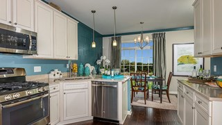 New Homes in Illinois IL - Country Club Hills by CalAtlantic Homes