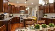 New Homes in Illinois IL - Remington Pointe North - The Prairies by Lennar Homes