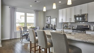 New Homes in Texas TX - Concord at Brushy Creek - The Grove by Pulte Homes
