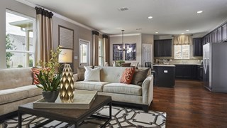 New Homes in Texas TX - Davis Ranch by Pulte Homes