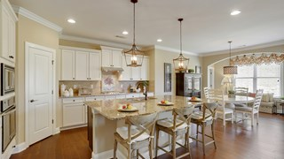 New Homes in Georgia GA - The Springs at Sterling on the Lake by Vanderbilt Homes