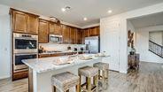 New Homes in Arizona AZ - La Estancia by Lennar Homes