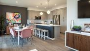 New Homes in California CA - Flora Walk by Olson Homes