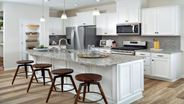 New Homes in North Carolina NC - Magnolia Walk Towns by Mattamy Homes