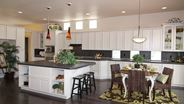 New Homes in Colorado CO - Stonebridge at Meridian Ranch by CreekStone Homes