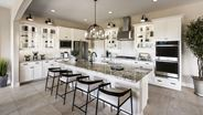 New Homes in Arizona AZ - Canopy North by Tri Pointe Homes