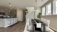 New Homes in South Carolina SC - Carnes Crossroads Paired Homes by David Weekley Homes
