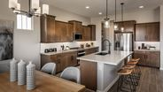 New Homes in Arizona AZ - Malone Estates - Groves Collection by Mattamy Homes