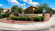 New Homes in Arizona AZ - Chaparral at Rancho Marana by Meritage Homes