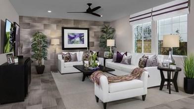 The Arboretum - Lilac